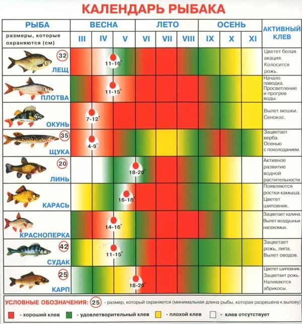 Календарь клева рыб